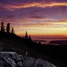 Dolly Sods Dawn