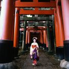 Misuzu the maiko (an apprentice geisha), at Fushimi Temple