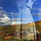 Reflection of Bodie