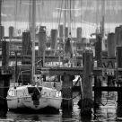 Port in dawn