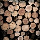 Log Pile