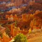 Afternoon light in Bryce Canyon