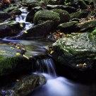 Stream in the Blue Ridge