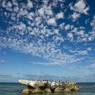 Trigg Island