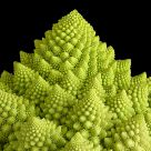 Romanescu