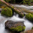 Rocky Mountian Stream