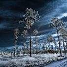 Blue Hour IR