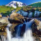Alpine Meadow Cascade, Mount Rainier