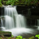 Waterfall in the Globe Forest