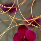 Flowers of bamboo sticks