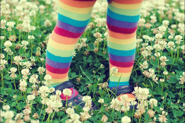 Clover rainbow