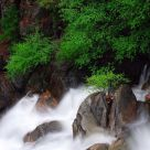 Cascade Falls in Spring