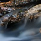 Wood in the water II