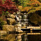 Fall in Kyoto gardens