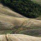 Tuscany 1