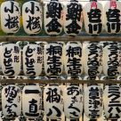 Shrine lanterns at Asakusa
