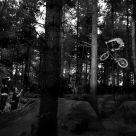 R.I.P Bedmond Trails