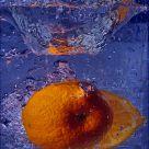 Orange Squash