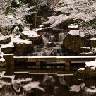 Kyoto gardens waterfall