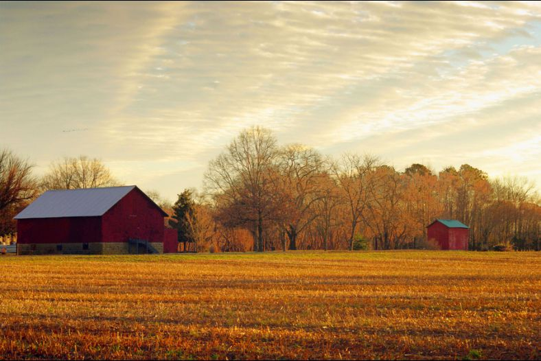 Red Barn at Sunrise
