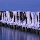 Iced Groins