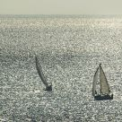 Sailing in eveninglight