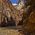 Zion Park (The Narrows)