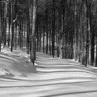 Untouched path