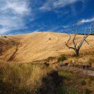 Dry Fleurieu Peninsula