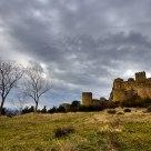 Árboles y castillo
