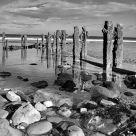 Sandsend Groynes