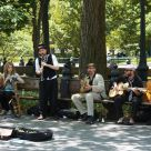 Music in the Park 3