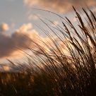 Le vent du large...