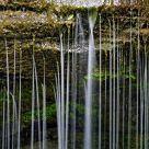 Rexford Falls - Summer - Detail