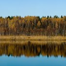 Autumn mirror (panorama)