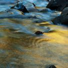 Stream of Gold