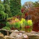 A quiet pond in an antique settin