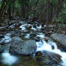 Bridal Veil Falls Stream