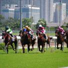 2010 Horse Racing