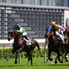 Horse Racing 2010