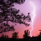 Dr. Suess Lightning