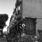 Neighbor Street