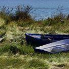 Barcas Terrestres