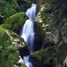 Monte y Agua