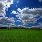 Wisconsin Field