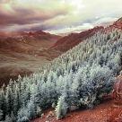 IR Landscape