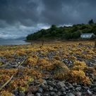 Tianavaig Bay, approaching storm