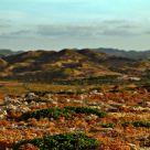 Cavalleria landscape (Minorca)