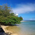 The Shore of Kauia