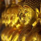 Gilded Buddhas